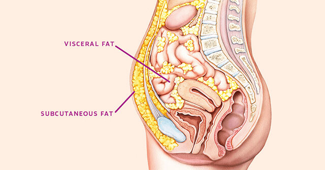 What's Going On with Stubborn Fat? Part 2